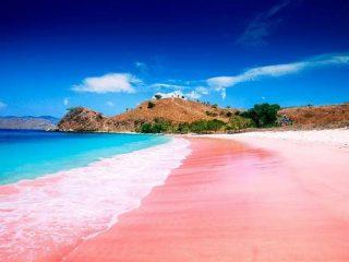 Pantai Pink dengan Pasir yang Unik dan Air Laut yang Jernih